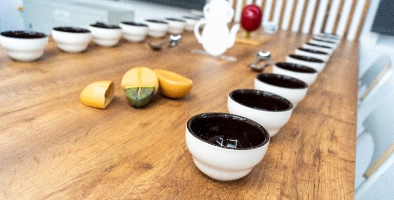 Lee más sobre el artículo Abierta la inscripción de formación en café